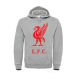 Толстовка Liverpool L.F.C см. другие цвета
